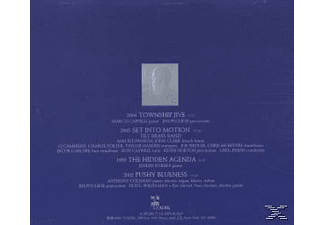 Anthony Coleman - Pushy Blueness  - (CD)