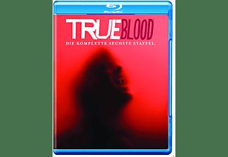 True Blood - Staffel 6 [Blu-ray]