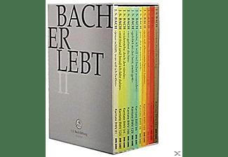 CHOR & ORCHESTER DER J.S. BACH-STIF - Bach Erlebt Ii  - (DVD)