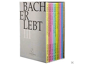 CHOR & ORCHESTER DER J.S. BACH-STIF - Bach Erlebt Iii  - (DVD)