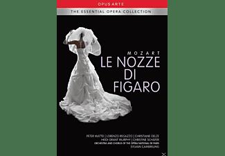 Christiane Oelze, Heidi Grant Murphy, Christine Schäfer, The Orchestra And Chorus Of The Opera National De Paris, Peter Mattei, Regazzo Lorenzo - Le Nozze Di Figaro  - (DVD)