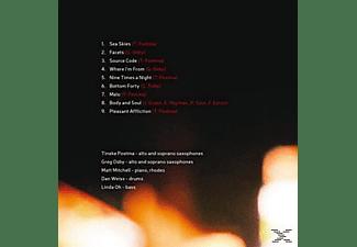 Tineke Postma - CD 2014 TBA  - (CD)