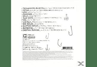 Rainer Various/trüby - Slouse-Fishing In Slower Territories  - (CD)