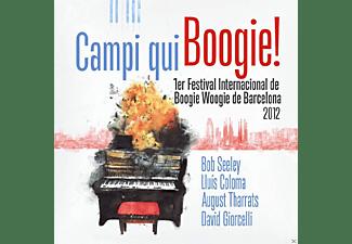 VARIOUS - Campi Qui Boogie  - (CD)