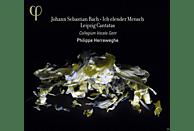 Collegium Vocale Gent - Leipziger Kantaten Bwv 44/48/73/109 [CD]