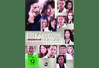 Greys Anatomy - Staffel 10 [DVD]