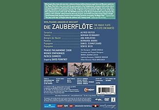 Wiener Symphoniker - Die Zauberflöte  - (DVD)