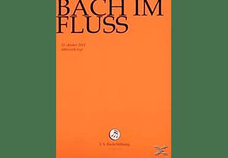CHOR & ORCHESTER DER J.S. BACH-STIF - Bach Im Fluss  - (DVD)