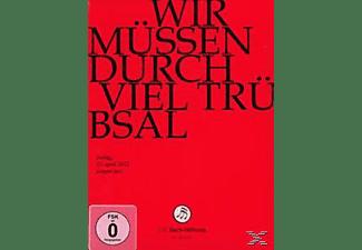 CHOR & ORCHESTER DER J.S. BACH-STIF - Wir Müssen Durch Viel Trübsal  - (DVD)