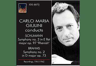 The Philharmonia Orchestra, Orchestra Sinfonica Della Rai Di Torino - Carlo Maria Giulini Collection vol.1  - (CD)