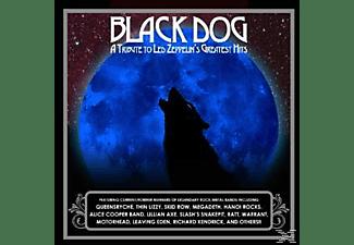 VARIOUS - Black Dog  - (CD)