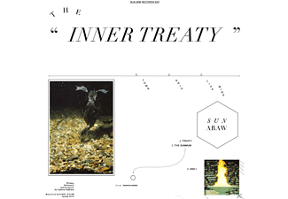 Sun Araw - THE INNER TREATY - (Vinyl)
