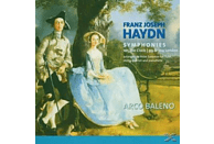 Arco Baleno Ensemble - Sinfonien 99,100,104 [CD]