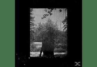 pixelboxx-mss-66393207