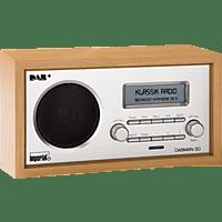 IMPERIAL 22-130-00 Dabman 30, DAB+ Radio
