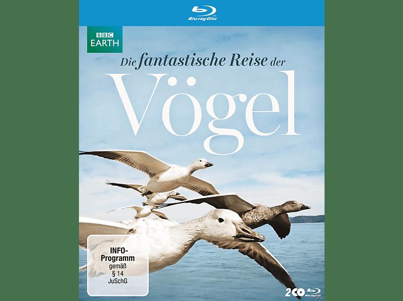 Die fantastische Reise der Vögel [Blu-ray]
