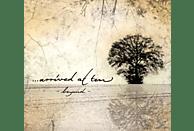 ...Arrived At Ten - Beyond [CD]