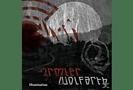 IRMLER,HANS JOACHIM / WOLFARTH,CHRISTIAN - ILLUMINATION [Vinyl]