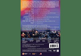 Itzhak Perlman, Yitzchak Meir Helfgot, Hankus Netsky, The Rejoce Chamber Orchestra, Klezmer Conservatory Band - Rejoice  - (DVD)
