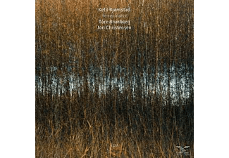 Ketil Björnstad, Ketil Trio Björnstad - Remembrance - (CD)
