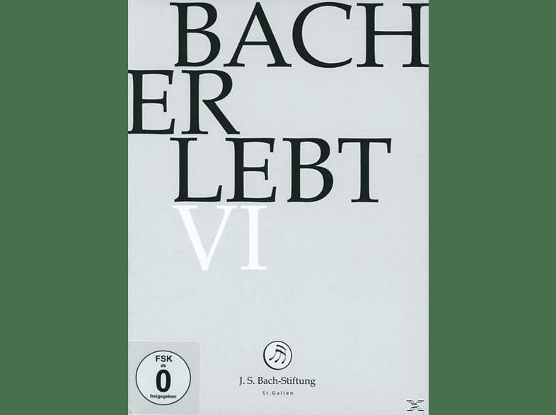 CHOR & ORCHESTER DER J.S. BACH-STIF - Bach Erlebt Vi [DVD]