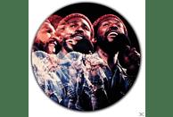 Marvin Gaye - LIVE [Vinyl]