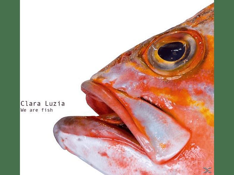 Clara Luzia - We Are Fish [Vinyl]