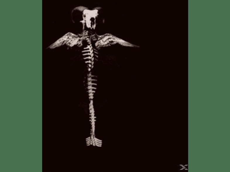 Generation Of Vipers - Howl & Filth [Vinyl]