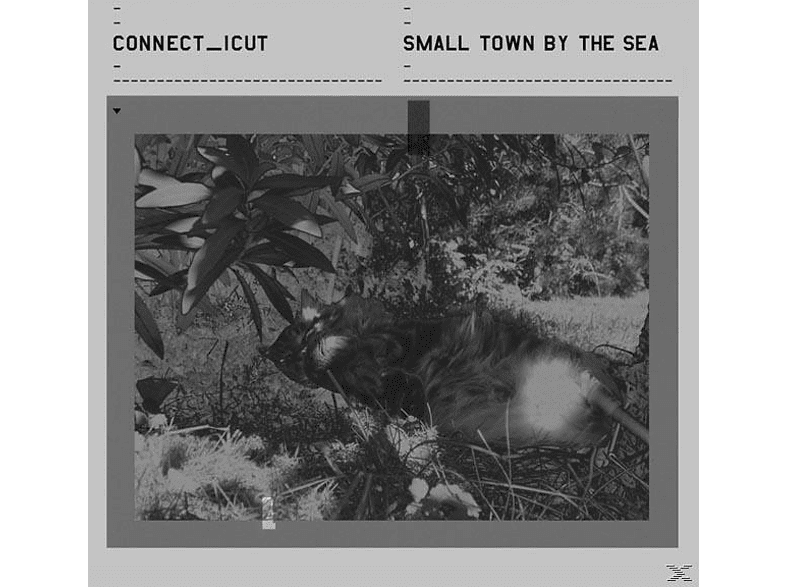 Connect_icut - Small Town By The Sea [CD]