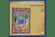 Joppich/Schola Bendiktinverabtei Münsterschwarzach - Gregorianische Gesänge Zu Advent Und Wei [CD]