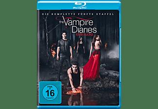 Vampire Diaries - Staffel 5 [Blu-ray]