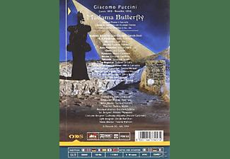 Chor & Orchester Citta Lirica - Madame Butterfly  - (DVD)