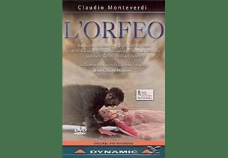 Malgoire, Jean-Claude - L'Orfeo (1607)  - (DVD)