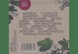 Luz Amoi - Bavarese  - (CD)