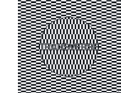 Carter Tutti Void - Transverse [CD]