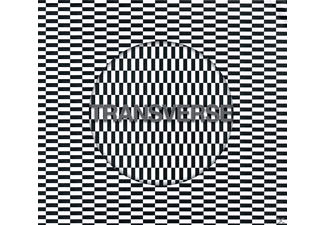 Carter Tutti Void - Transverse - (CD)