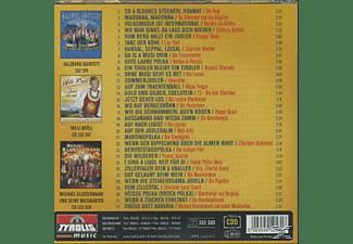 VARIOUS - Das grosse Musikantentreffen,Folge 29  - (CD)