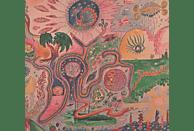 Youth Lagoon - Wondrous Bughouse [CD]