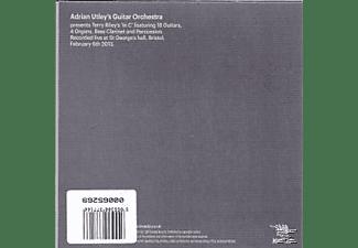 Adrian Utley's Guitar Orchestra - In C  - (CD)