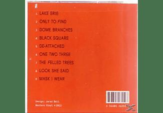 Nat Baldwin - Dome Branches: The Mvp Demos  - (CD)