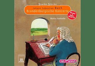 VARIOUS - Brandenburgische Konzerte  - (CD)