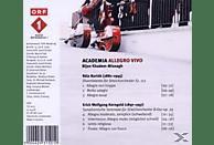 Bijan Khadem-missagh - Academia Allegro Vivo [CD]