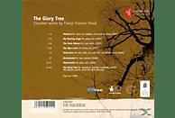 Ensemble Na Marna, Lomeiko, Lendvai String - The Glory Tree-Kammermusik [CD]