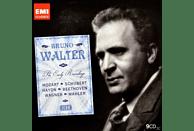 Wiener Philharmoniker - Icon: Bruno Walter [CD]