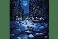 Hoff Ensemble/+ - Quiet Winter Night [Vinyl]