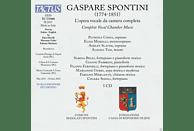 Patrizia Cigna, Elisa Morelli, Ashley Slater, Alessio Tosi - Complete Vocal Chamber Music [CD]