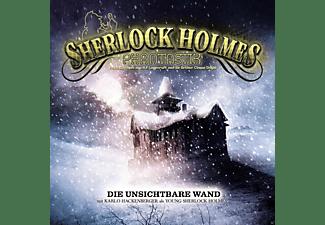 Sherlock Holmes Phantastik - Sherlock Holmes Phantastik 01: Die unsichtbare Wand  - (CD)