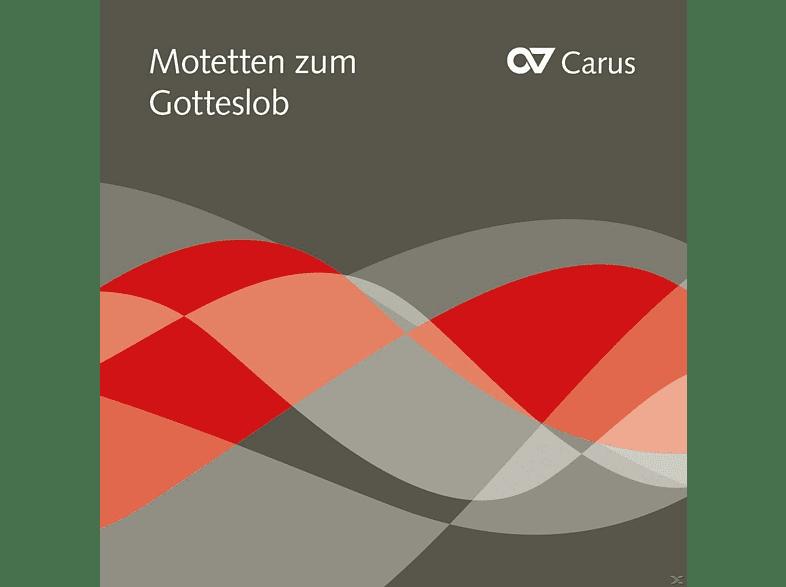 Collegium Monacense St. Michael München, Figuralchor Köln, Limburger Domchor, Kölner Dommusik - Motetten Zum Gotteslob [CD]