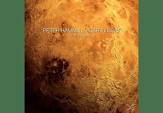 Peter Hammill - Other World  - (Vinyl)