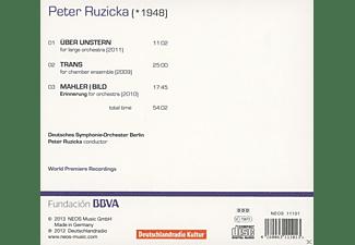 Deutsches Symphonie-orchester Berlin - Peter Ruzicka: Orchestra Works Vol. 2  - (CD)